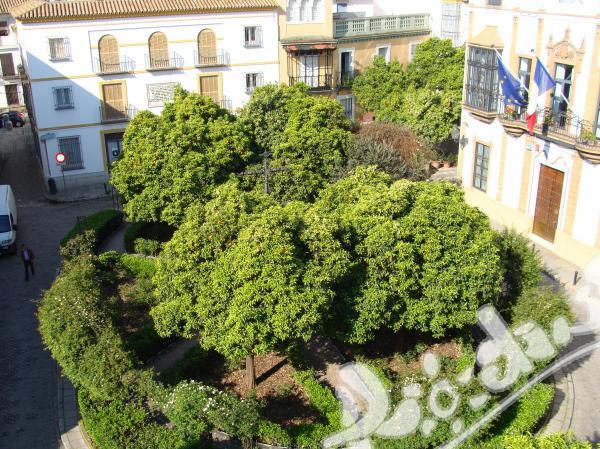 Езикова ваканция в историческия център на Севиля, Испания!