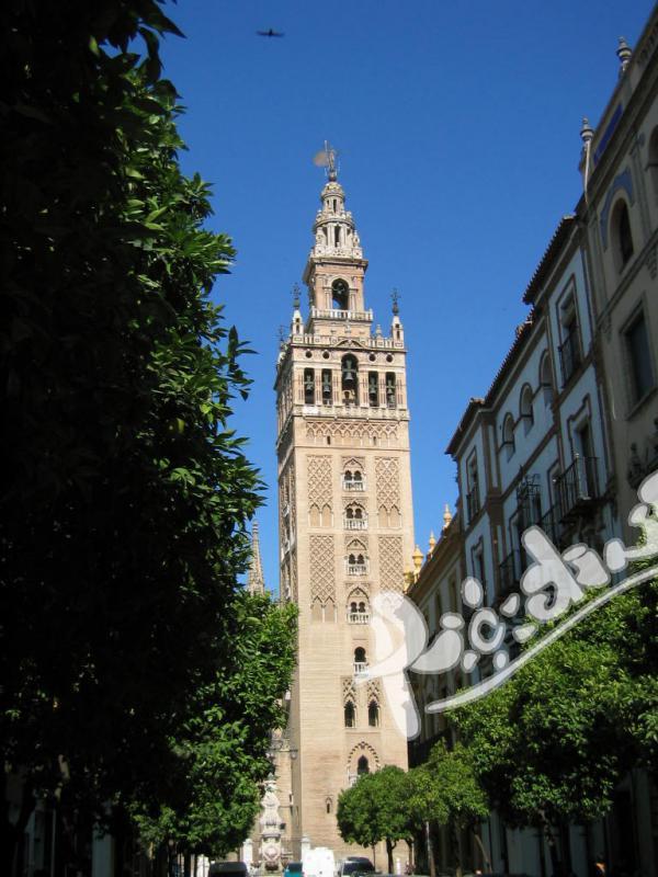 Подготвителни курсове за DELE в Севиля!