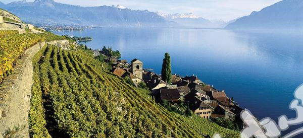 European University - Montreux