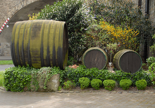Фестивалът на виното в Кобленц